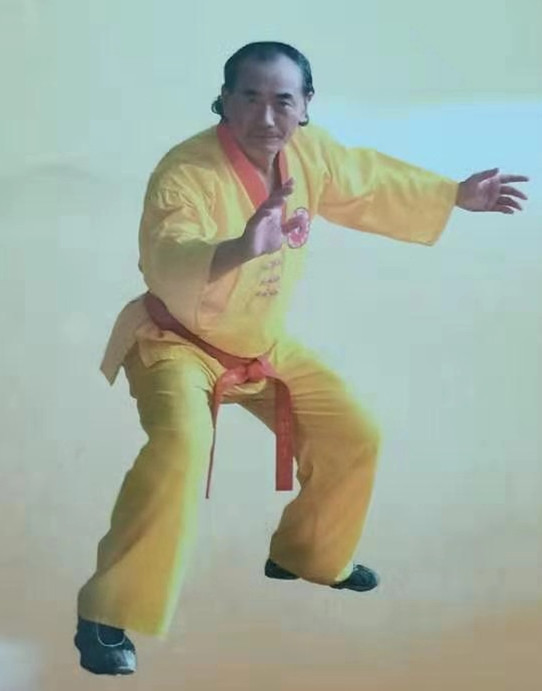 谈清云武道讲座:论内、外家拳